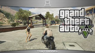 Grand Theft Auto 5 Gameplay Intel Core 2 Duo E8400  + GeForce GTX 650