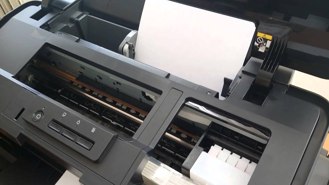 L1800 epson не берет бумагу