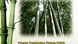 Hai-O Garam Buluh (Bamboo Salt) - Bahasa Melayu