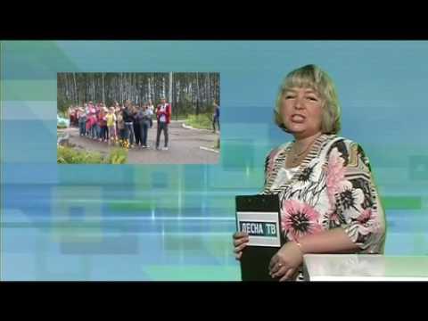 Десна-ТВ: День за Днём от 6.07.2016 г