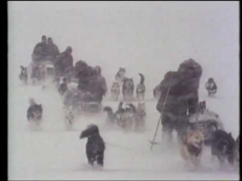 David Cobham Showreel - Explorers: The Story of Roald Amundsen
