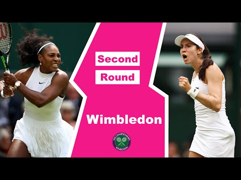 Serena Williams VS Christina McHale Highlight 2016 R2