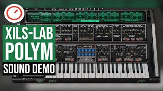 XILS Lab PolyM Sound Demo - Moog Polymoog Emulation For PC & Mac