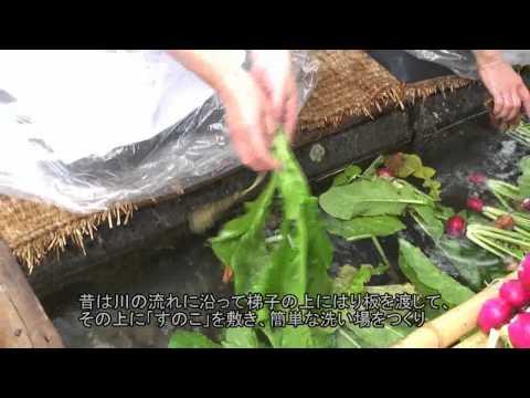 高山市 「飛騨の里」 ~菜洗い・漬け物漬け~