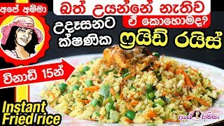 Instant fried rice without cooking by Apé Amma