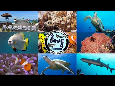 Scuba diving with Borneo Divers on Mabul and Sipadan Island Malaysia 2013 HD (part 1)