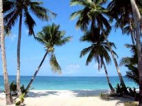 Dunedin Florida Beaches - Dunedin Florida Homes for Sale - View our Dunedin Florida Video