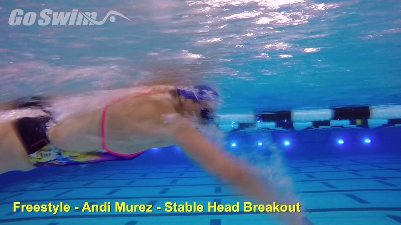 Freestyle - Andi Murez - Stable Head Breakout