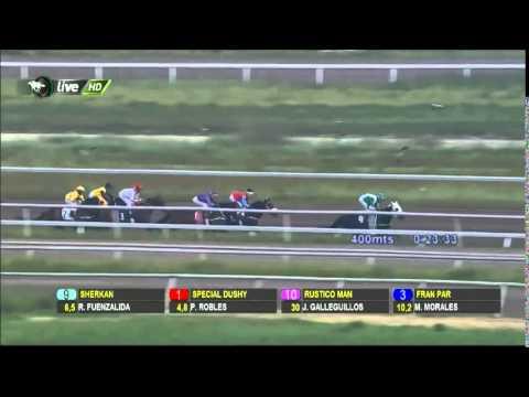 Vidéo de la course PMU PREMIO ZE ROBERTO H.