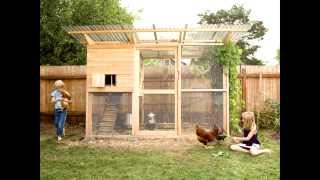 The Best 22 Backyard Chicken Coop Plans