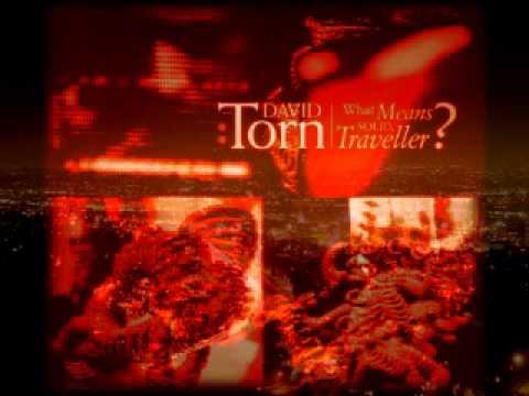 David Torn - Tiny Burns A Bridge&Elsewhere, Now Than Waving