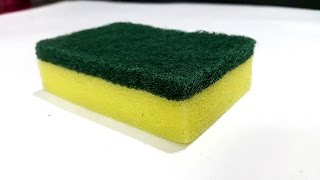 5 Sponge Life Hacks You Should Try!