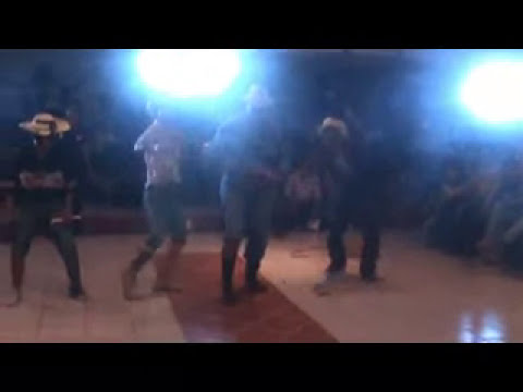 tecnologico de cd altamirano disco, baile chusco 2010