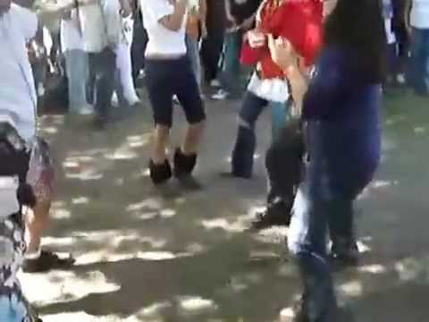 Raghse Irani video