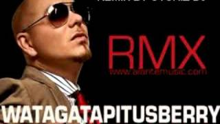 Watch Pitbull Watagatapitusberry Remix video