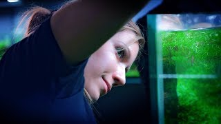 AQUAGIRLS ROCK - TRIMMING PLANTS IN OUR LARGE AQUARIUM WITH SOME HELP