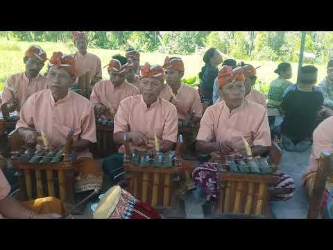 Sekaha Angklung Desa Pakraman Tunju Desa Dinas Gunungsari,Kec. Seririt.Bali.