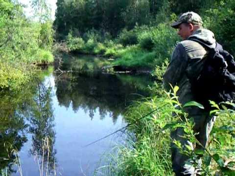 видео рыбалка твичем