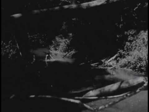 Isabel Sarli - El trueno entre las hojas (Fragmento) thumbnail