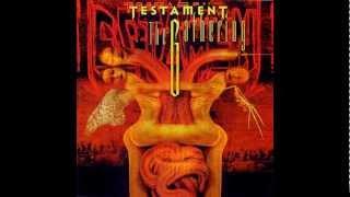 Watch Testament True Believer video