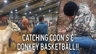 Hunting Raccoons, Eating Crawfish and DONKEY Basketball! | VLOG