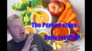 The pureed stage!! baby food?!?