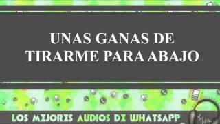 Unas Ganas De Tirarme Para Abajo - Conversaciones De Whatsapp - Los Mejores Audios Y Videos Whatsapp