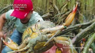 """Vào Rừng Săn Cua Biển và Bắt Ốc cùng Cao Thủ 5 """"Lửa""""  Đất Mũi  l Catch Crab and Cook"""