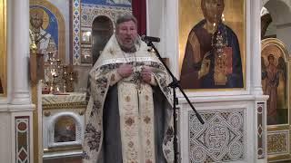 Проповедь отца настоятеля о необходимости посещения храма (09.01.21)