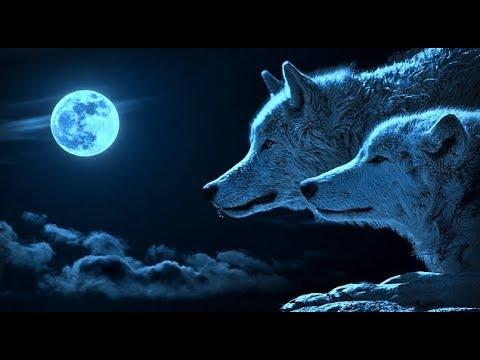 「超級血色藍月亮」踏上猶太節期!31/1/2018 血月預言:以色列戰爭!第三世界大戰、殞星、大海潚、大地震警報!@香港耶路撒冷