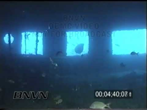 4/20/2002 Princes Ann Ship Wreck and Hawksbill Turtle Video