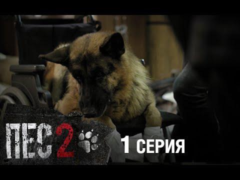 Сериал Пес - 2 сезон - 1 серия