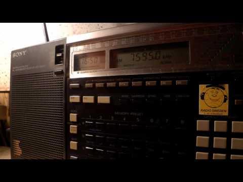 03 10 2015 Radio Latino, Italian Pirate, music and ID in English to Europe 1650 on 7595