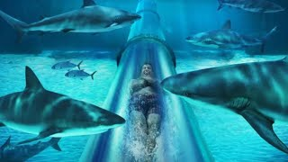 10 Most Terrifying Waterslides In The World!