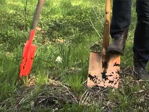 Kupferwerkzeug In Garten Und Permakultur