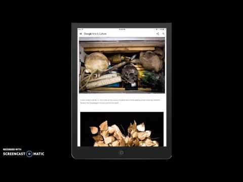 Google Arts and Culture iOS App