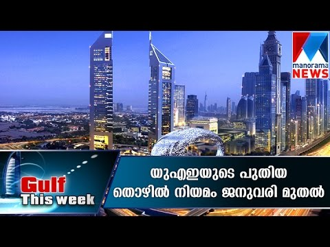 New UAE labour law come into effect from Jan 1, 2016 | Manorama News