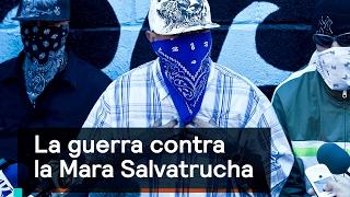 La guerra contra la Mara Salvatrucha - Foro Global