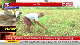 Farmers Focus on Pulses Farming in East Godavari District