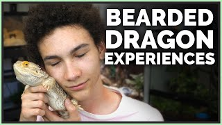 Why I Refused to get a Bearded Dragon