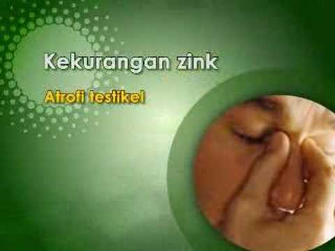 Sex Improve By Herbs - Malay Version video