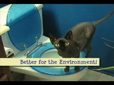 How To Toilet Train Your Cat video