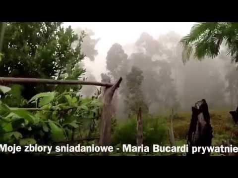 Cz. 1 Sniadanie z Maria Bucardi zbiory owocow egzotyczny ogrod raw surowe weganskie