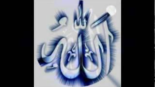 Maulana Shah Hakeem Muhammad Akhtar - Afzal Guftagu