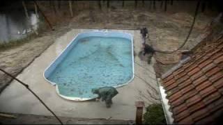 Zwembad constructie en aanleg