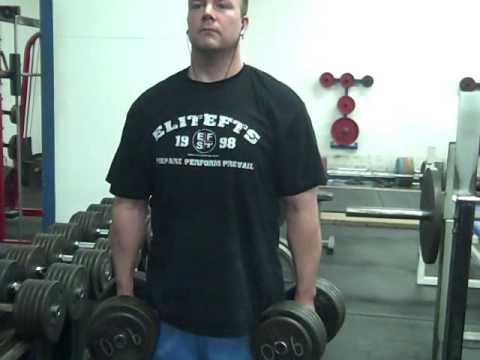 Real Muscle Building - How to do Dumbbell Shrugs, no BS Strength Training Image 1
