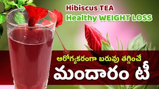 Hibiscus Tea For Weight Loss - Hibiscus Tea Benefits - hibiscus tea recipe