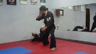 KENPO KARATE SELF DEFENCES DESVIACION FATAL