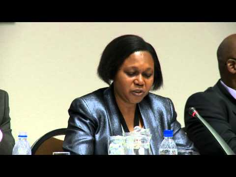 Mrs. Olushola Olayide, African union commission (AUC)