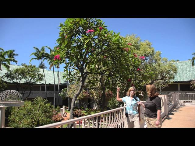 Tropical Gardens at Four Seasons Lanai at Manele Bay